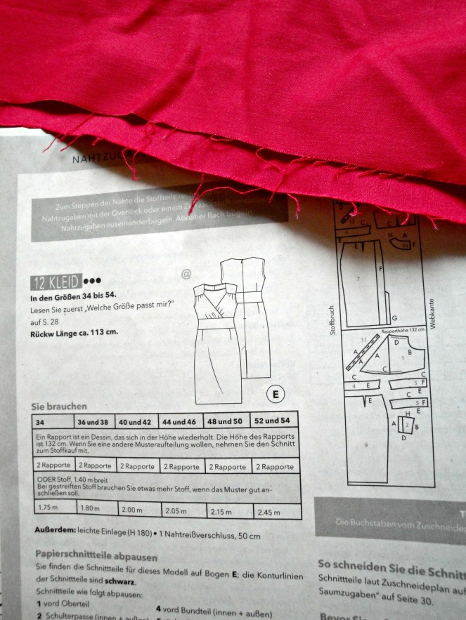 DSC03528.jpg